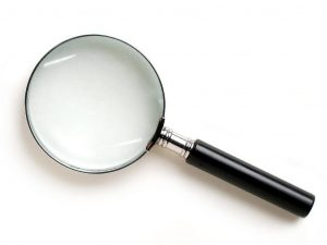 Barking up the Muse Tree | Janet Gershen-Siegel | jespah | Focus Magnifying Glass